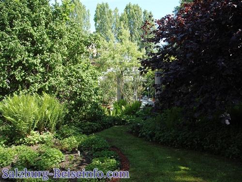 Botanischer Garten Freisaal