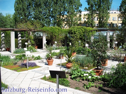 botanischer garten salzburg. Black Bedroom Furniture Sets. Home Design Ideas