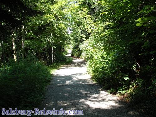 Familienwanderweg Gaisberg