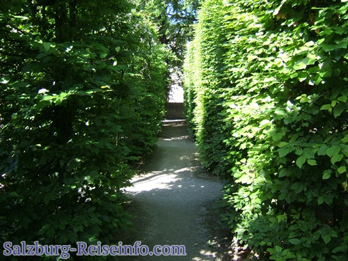 Labyrinth Salzburg Stadt