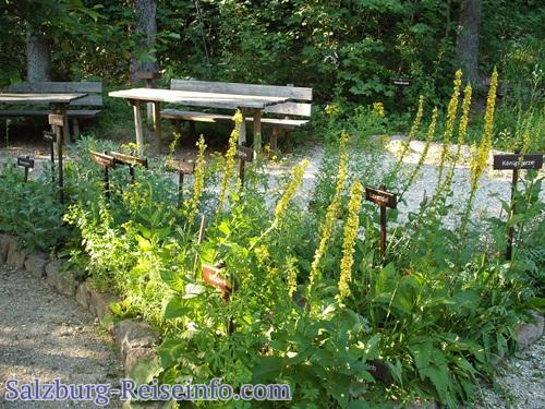 Kräutergarten umringt von Bänken