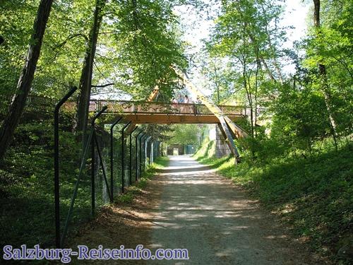 Holzbrücke im Tiergarten