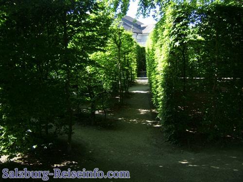 Schattenplatz im Mirabellgarten