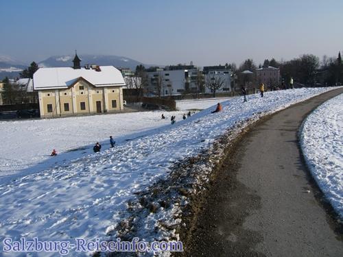 Krauthügel Rodeln Stadt Salzburg